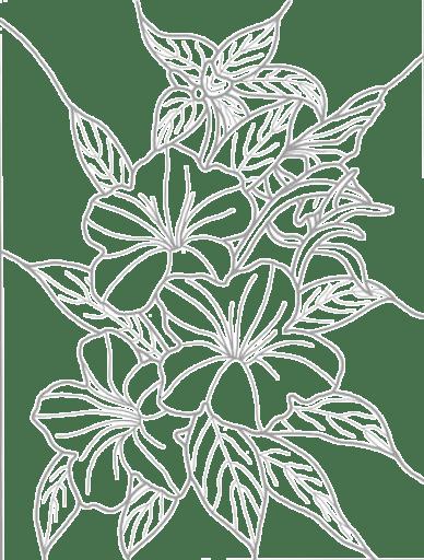 Background leaf number one